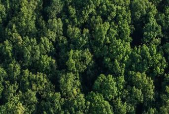 Godrej Reserve Banner