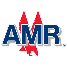 AMR Infrastructure Limited