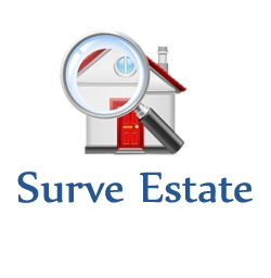 Surve Estate Agency