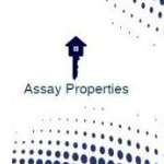 Assay Properties