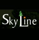 Skyline Group