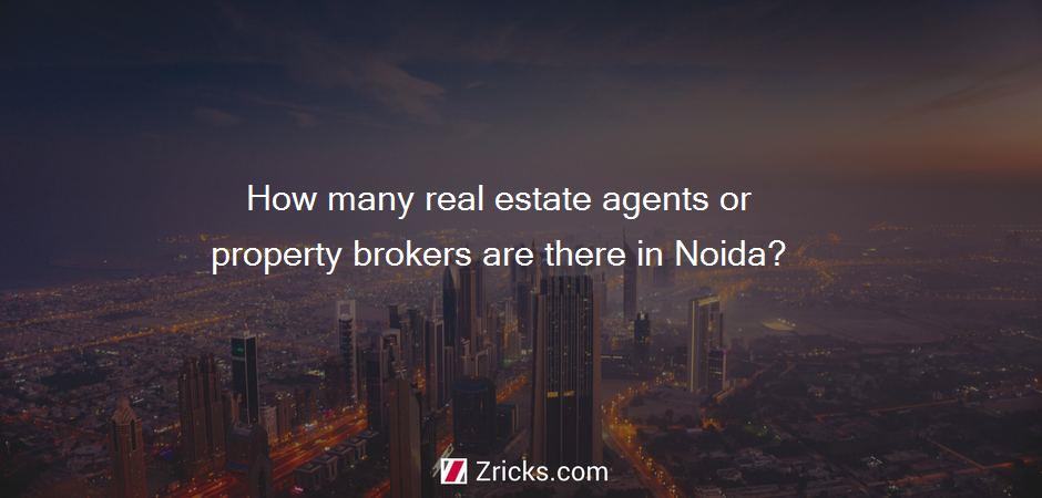 How many real estate agents or property brokers are there in Noida?