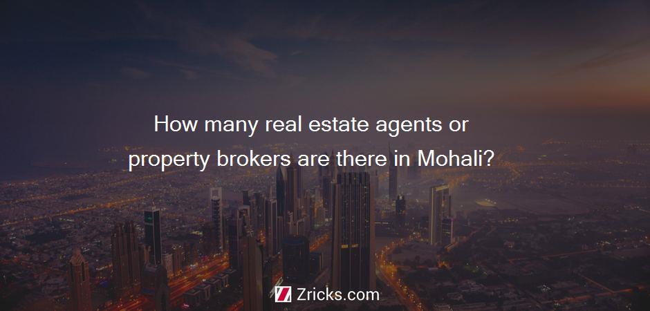 How many real estate agents or property brokers are there in Mohali?