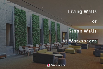 Living Walls or Green Walls at Workspaces
